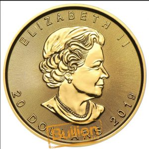 Canadian Maple Gold 0.5 oz Coin obverse.jpg