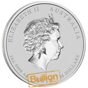 Year of the Pig Perth Silver 1 kg Coin obverse.jpg